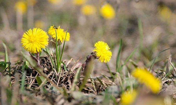 Прикольные и красивые картинки про Апрель (4)