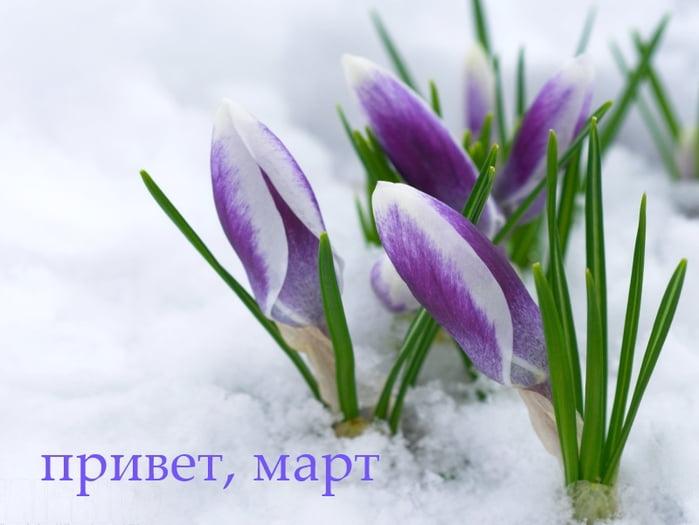 Прикольные и красивые картинки про Март (14)