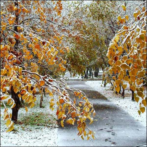 Прикольные и красивые картинки про Ноябрь (10)