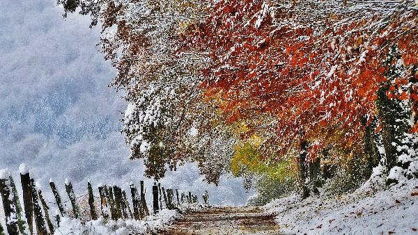 Прикольные и красивые картинки про Ноябрь (11)