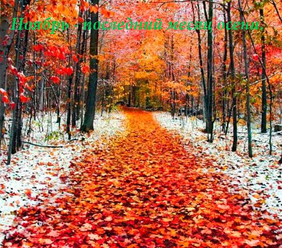 Прикольные и красивые картинки про Ноябрь (19)