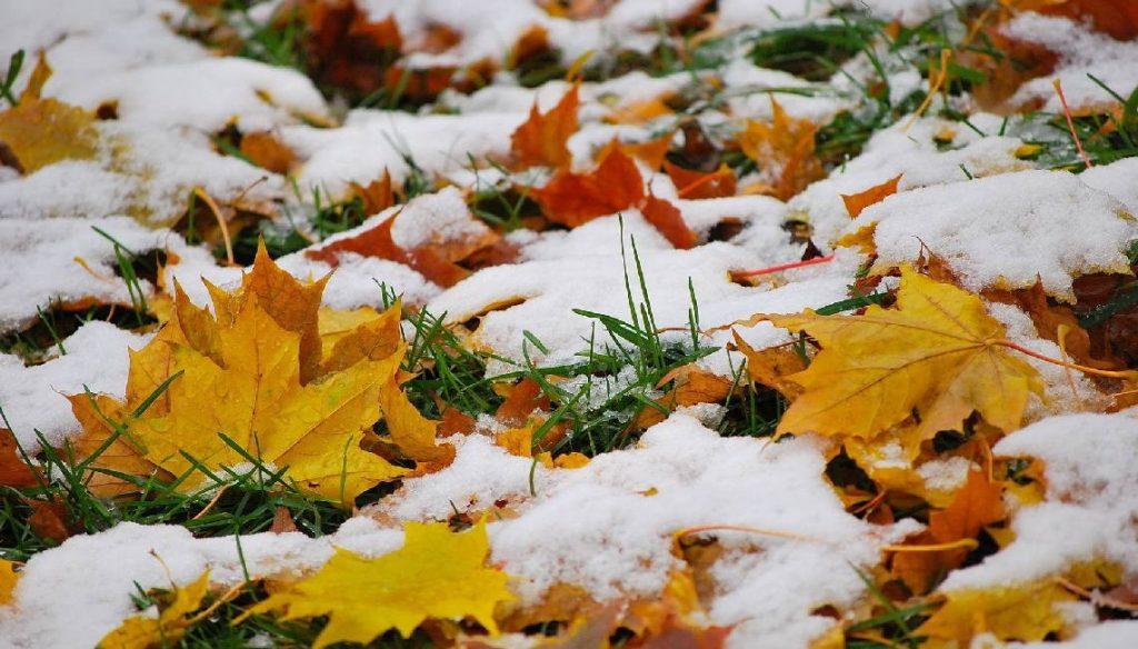 Прикольные и красивые картинки про Ноябрь (2)