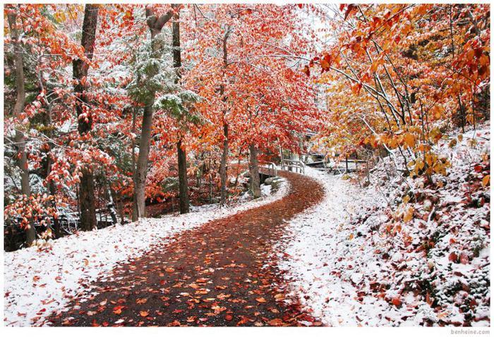 Прикольные и красивые картинки про Ноябрь (3)