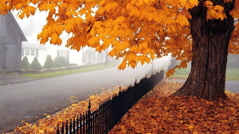 Прикольные и красивые картинки про Ноябрь (8)