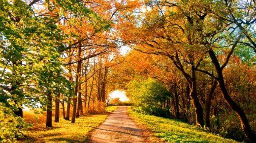 Прикольные и красивые картинки про Сентябрь (2)