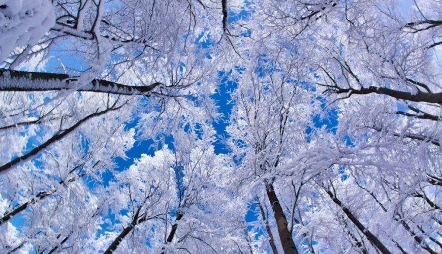 Прикольные и красивые картинки про Январь (2)