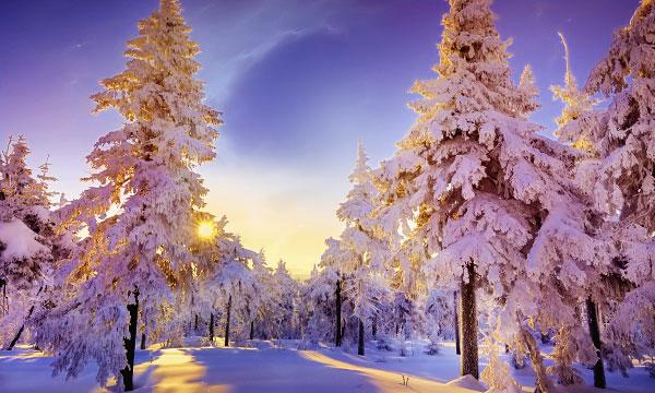 Прикольные и красивые картинки про Январь (8)