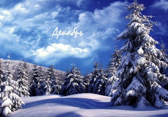 Прикольные и красивые картинки про декабрь (1)