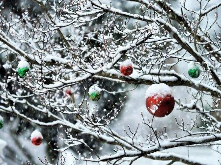 Прикольные и красивые картинки про декабрь (12)