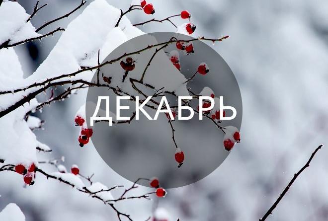 Прикольные и красивые картинки про декабрь (14)