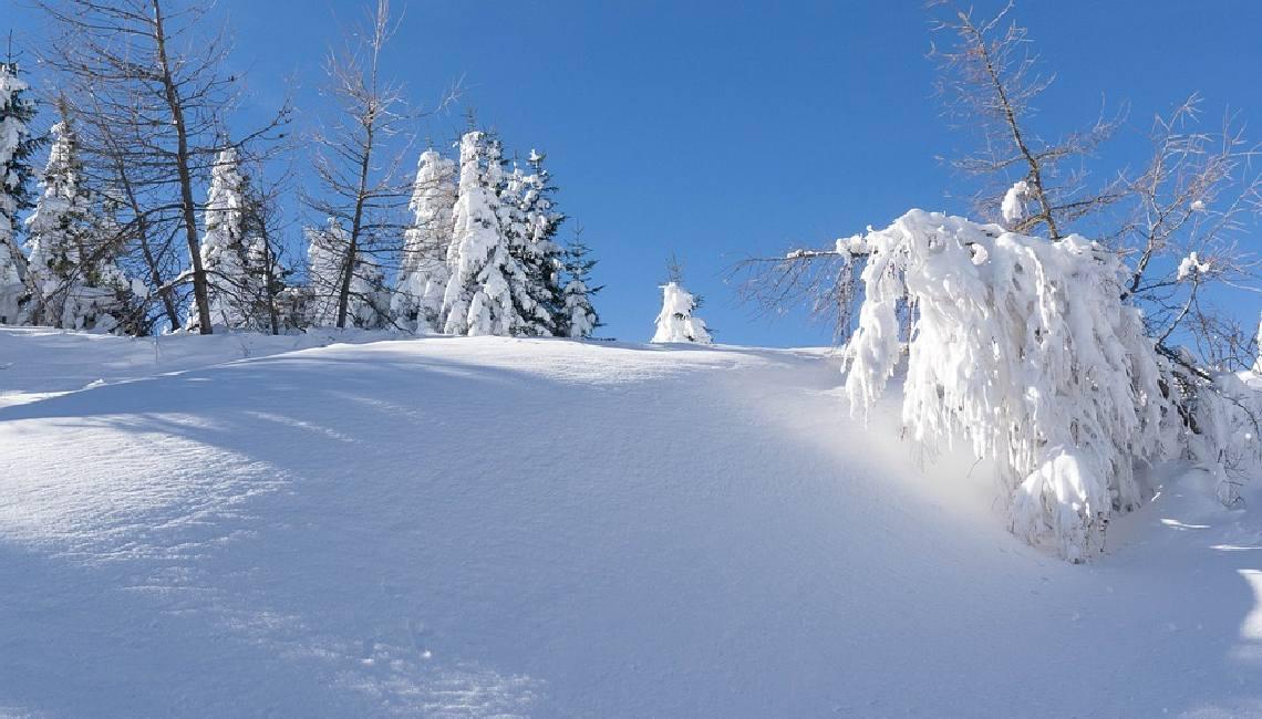 Прикольные и красивые картинки про декабрь (2)