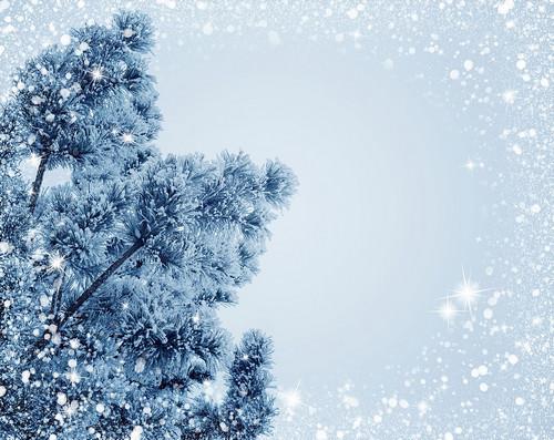 Прикольные и красивые картинки про декабрь (5)
