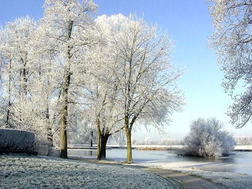 Прикольные и красивые картинки про декабрь (6)