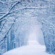 Прикольные картинки про зиму для взрослых и детей (1)