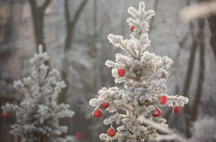Прикольные картинки про зиму для взрослых и детей (10)