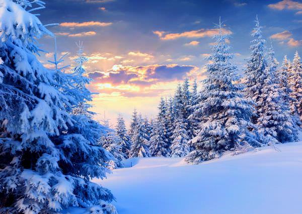Прикольные картинки про зиму для взрослых и детей (13)