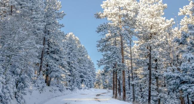Прикольные картинки про зиму для взрослых и детей (15)