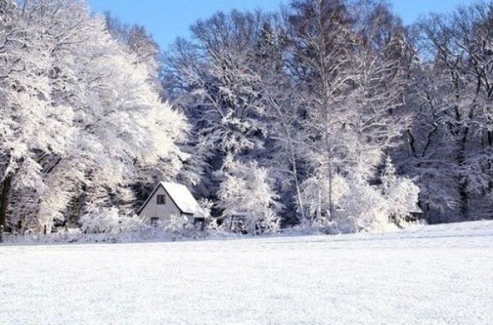 Прикольные картинки про зиму для взрослых и детей (24)