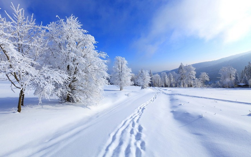 Прикольные картинки про зиму для взрослых и детей (5)