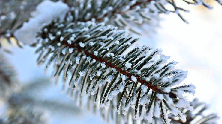 Прикольные картинки про зиму для взрослых и детей (8)