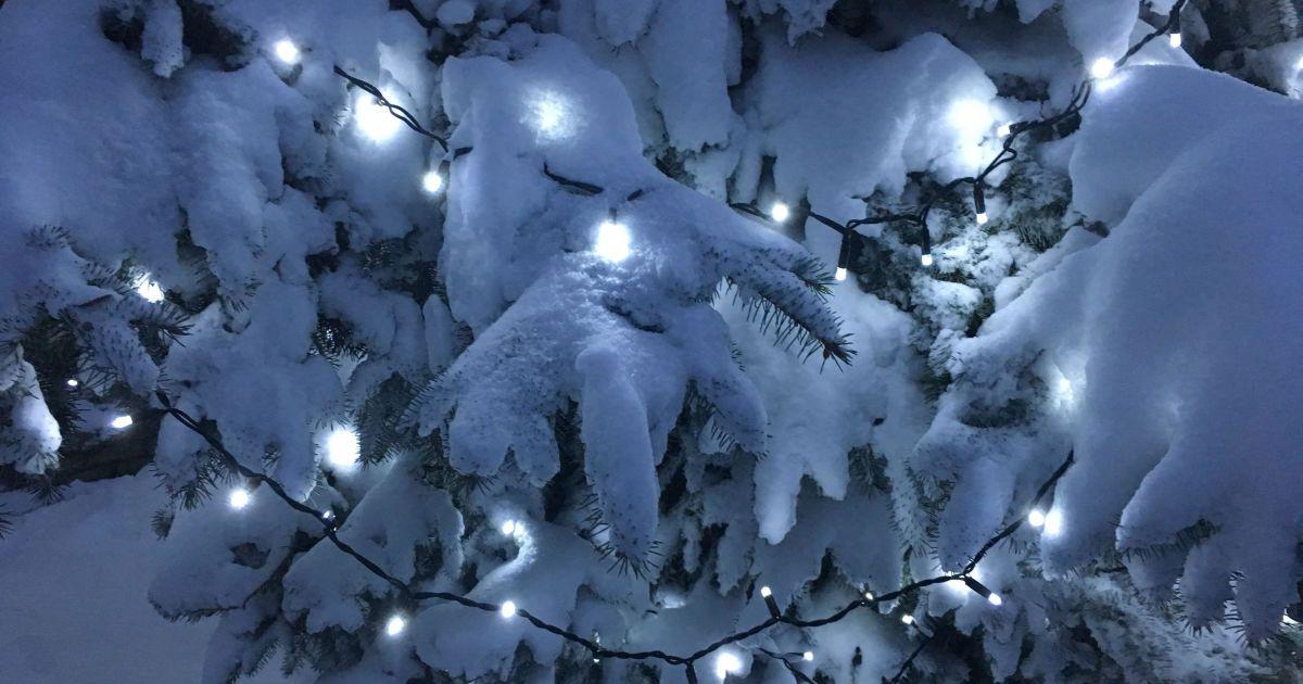 Прикольные картинки про зиму для взрослых и детей (9)