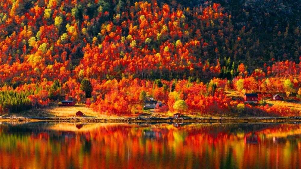 Прикольные картинки про осень   подборка 25 фото (1)