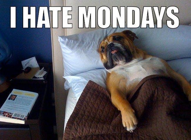 Прикольные картинки про понедельник (9)