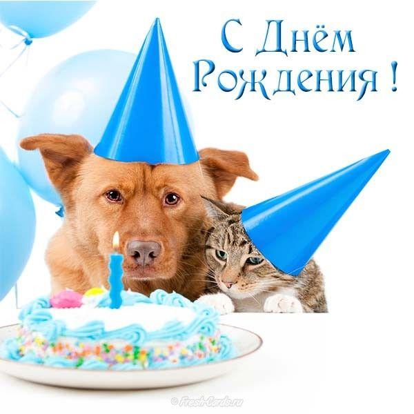 Прикольные открытки с поздравлением женщине с днем рождения (7)