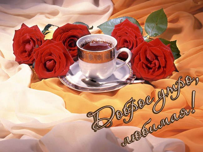 Гифка с добрым утром любимая моя, цветы для тебя