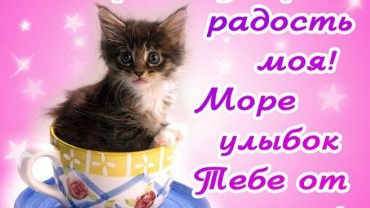 Смешные картинки с добрым утром для девушки (15)