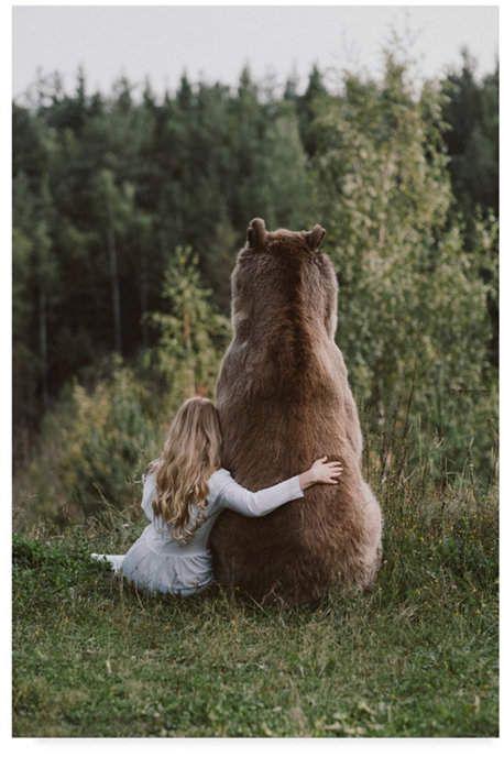 Смешные картинки с медведями - подборка (18)