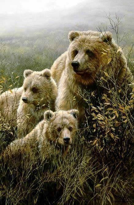 Смешные картинки с медведями - подборка (7)