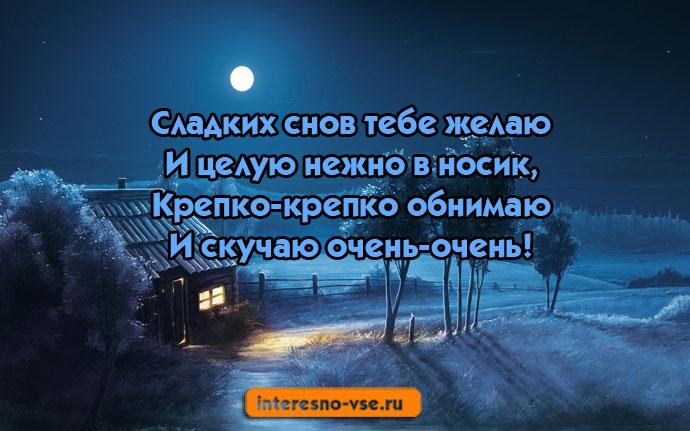 Спокойной ночи царь - прикольные открытки (16)