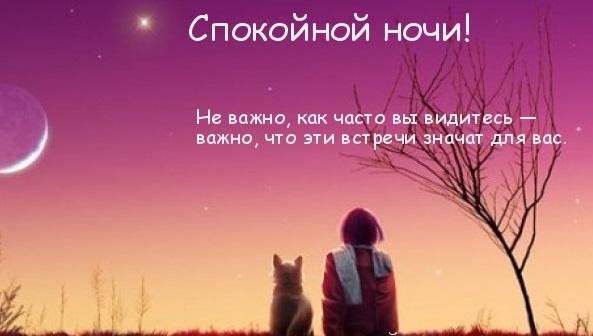 Спокойной ночи царь - прикольные открытки (3)