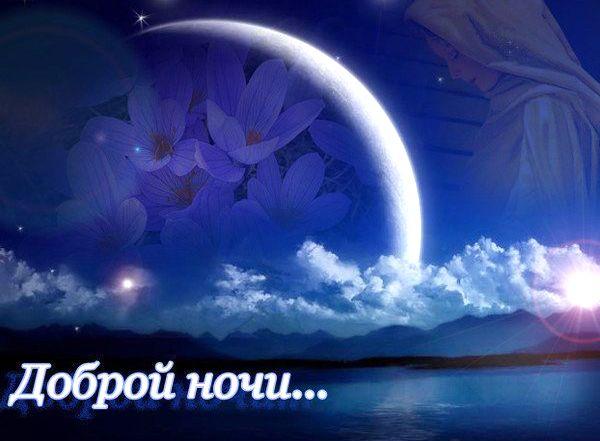 Спокойной ночи царь - прикольные открытки (4)