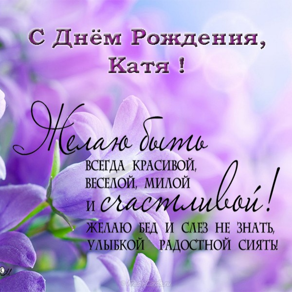 С днем рождения Катя картинки с поздравлениями прикольные (1)