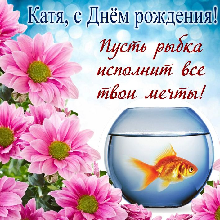 С днем рождения Катя картинки с поздравлениями прикольные (2)