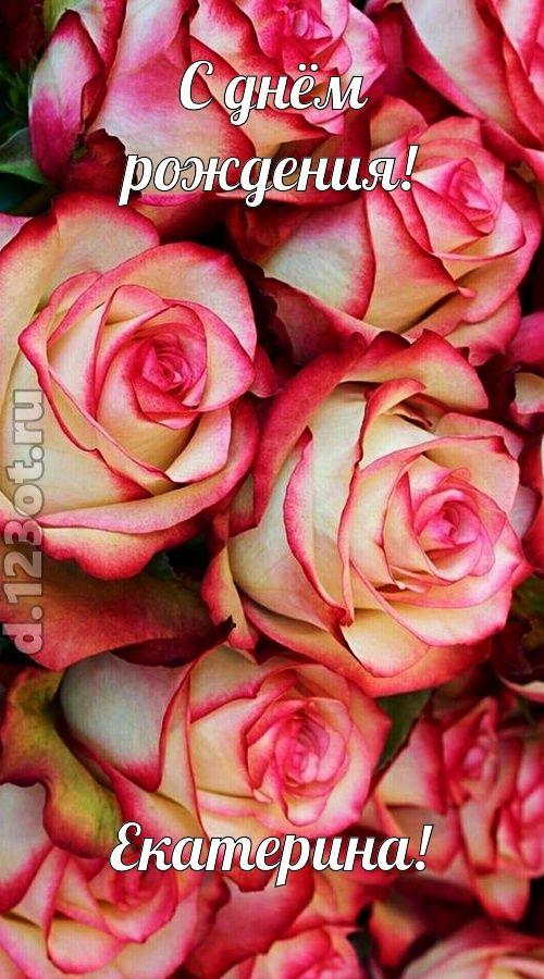 С днем рождения картинки красивые для женщины Екатерине (1)