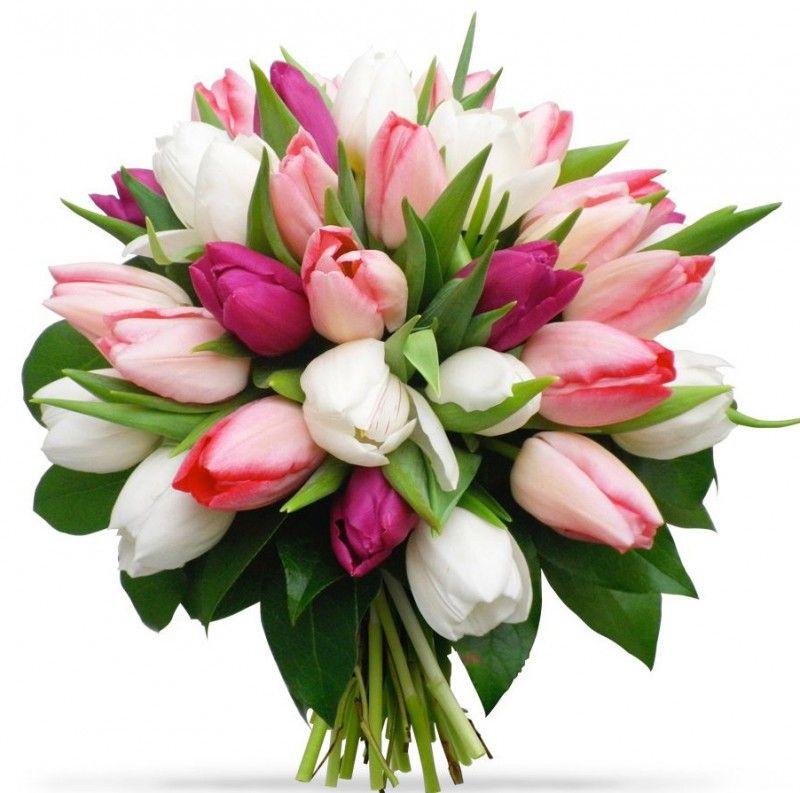 С днем рождения картинки красивые для женщины Екатерине (10)