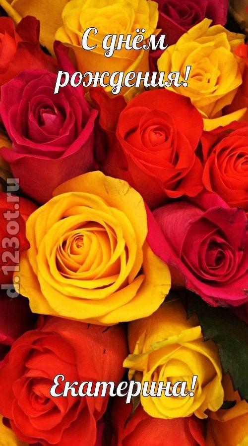 С днем рождения картинки красивые для женщины Екатерине (5)