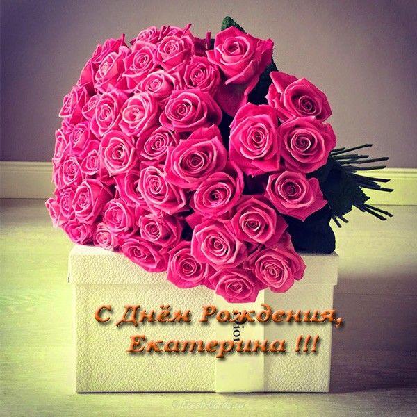 С днем рождения картинки красивые для женщины Екатерине (6)