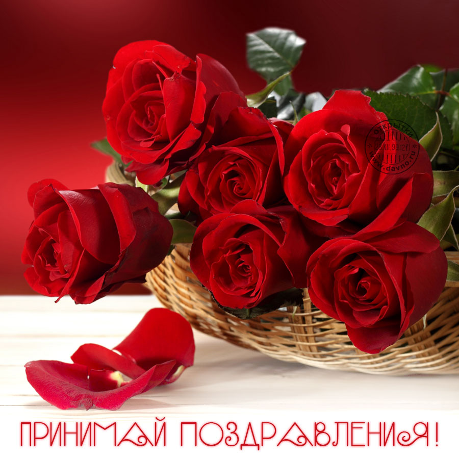С днем рождения картинки розы красивые для девушки (13)