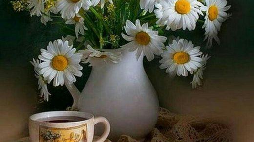 С добрым утром картинки красивые с надписями женщине (8)