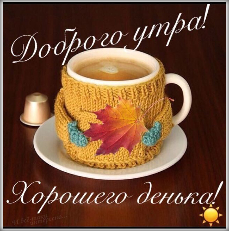 С добрым утром любимая и хорошего дня картинки (7)