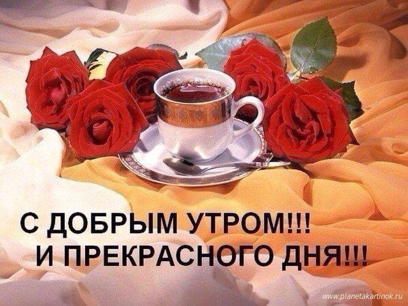 Фото с добрым утром и хорошим днем девушке (11)