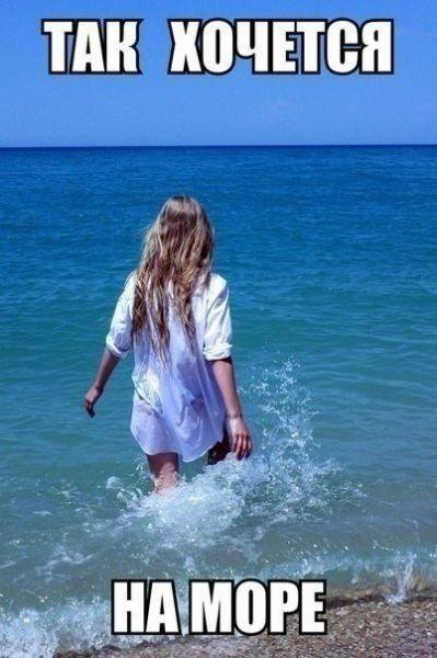 Хочу на море - прикольные картинки с надписями 20 фото (19)