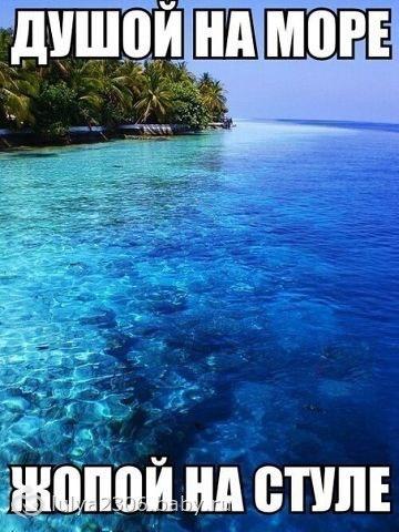 Хочу на море - прикольные картинки с надписями 20 фото (8)