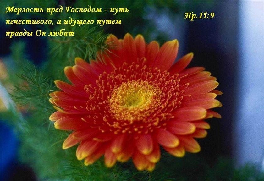 Христианские картинки с добрым утром и хорошего дня (22)