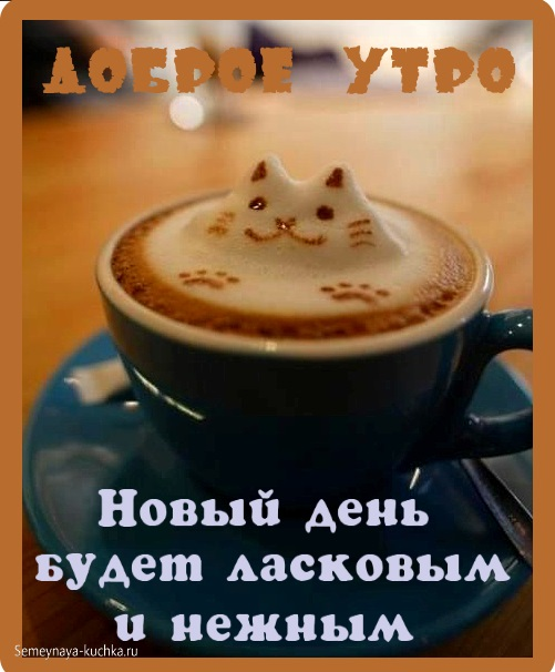 Чашка кофе картинки с добрым утром любимой девушке (15)