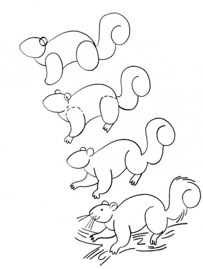 Как нарисовать белку из сказки о Царе Салтане поэтапно - рисунки (20)